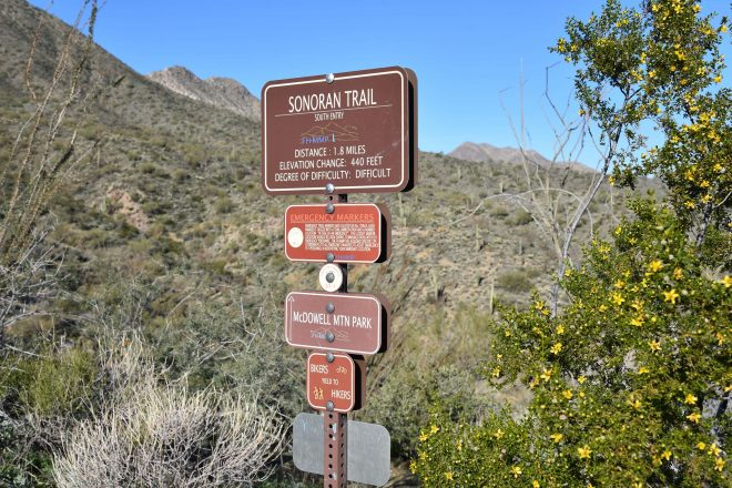 Hiking in the Fountain Hills McDowell Mountain Preserve