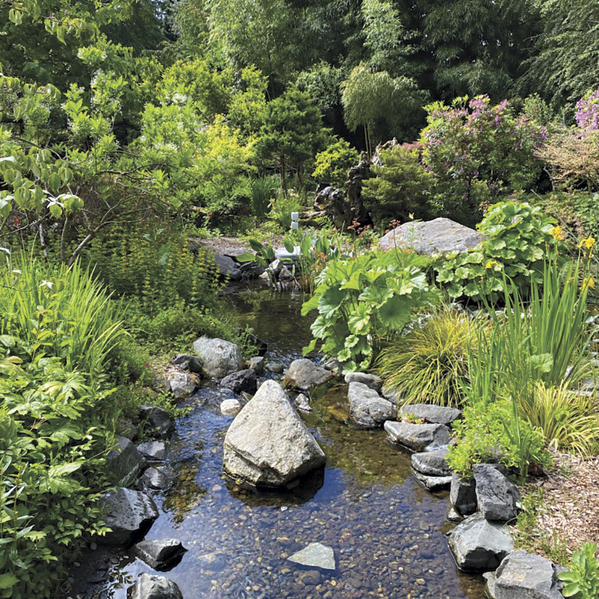 Elda Behm's Paradise Garden at Highline SeaTac Botanical Gardens; Photo by Madison Rutherford
