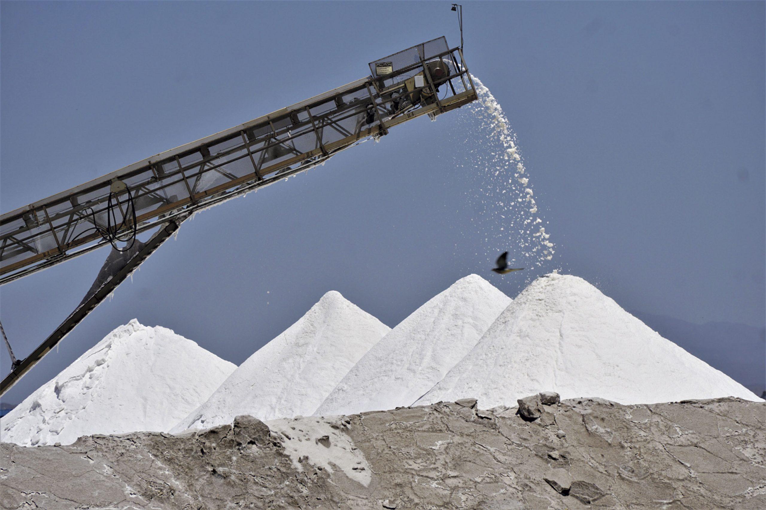 salt harvest, 2021; Photo courtesy Douglas C. Towne