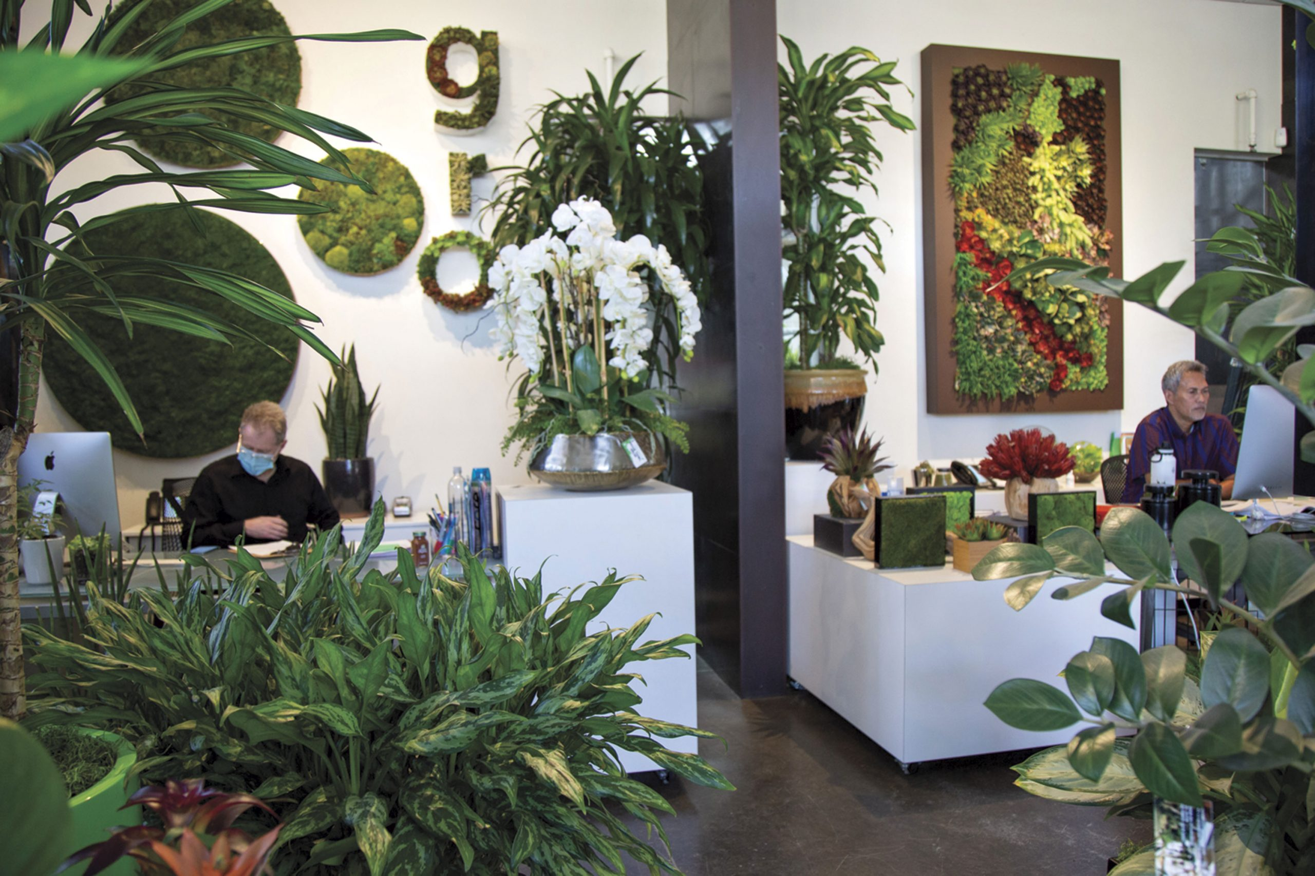 Office space at Plant Solutions; Photo by Angelina Aragon