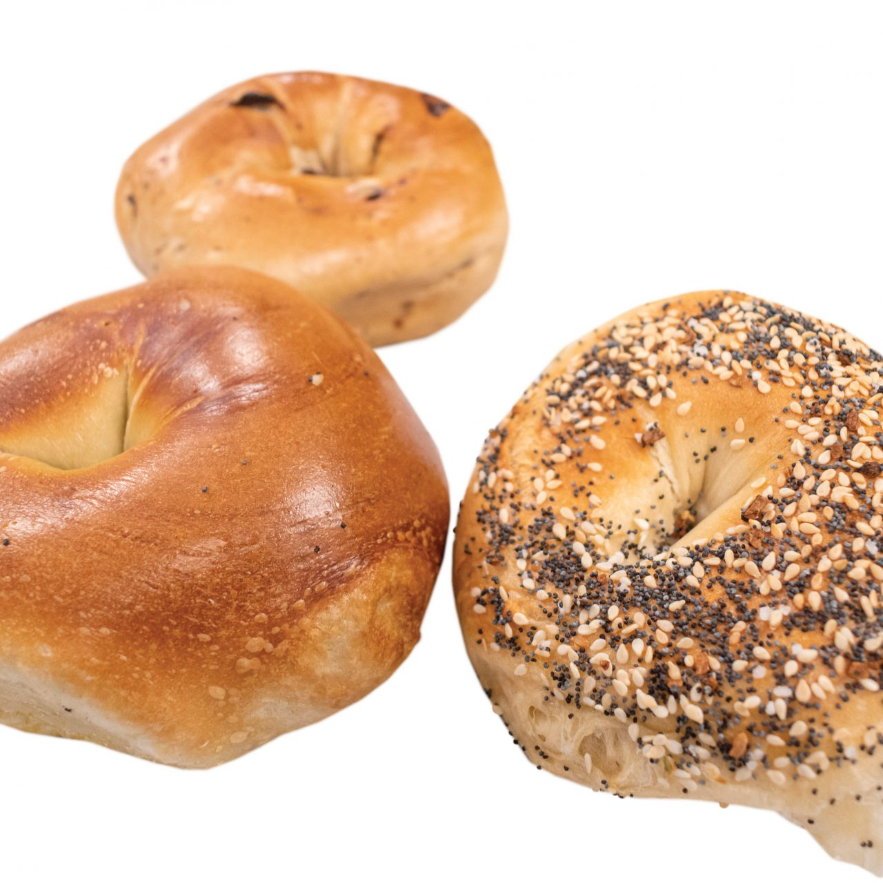 The Best Bagels Across the 4 Corners of the Valley