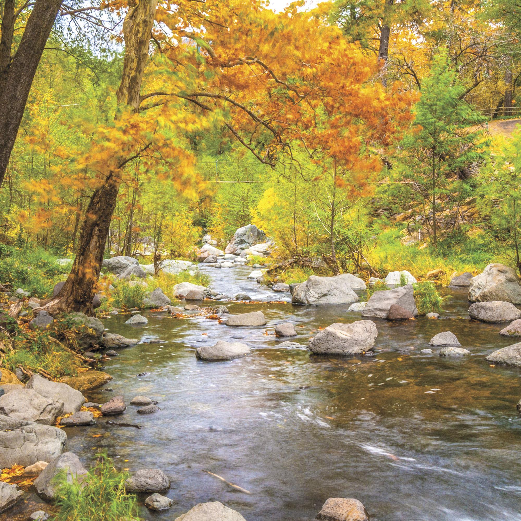 Oak Creek, Sedona; Photo courtesy Adobe Stock Images