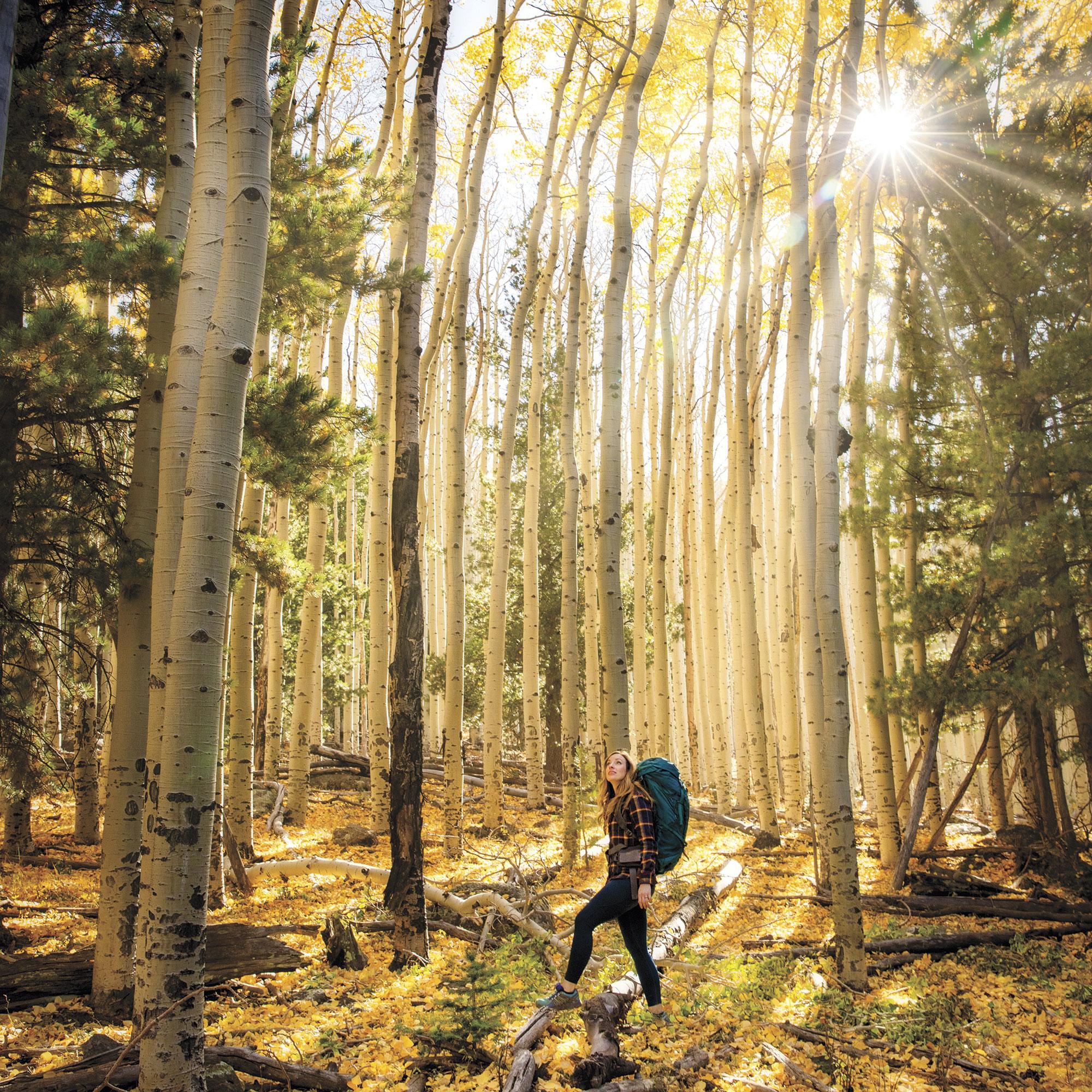 Hiking at Abineau-Bear Jaw Loop; Photo by Kevin Kaminski