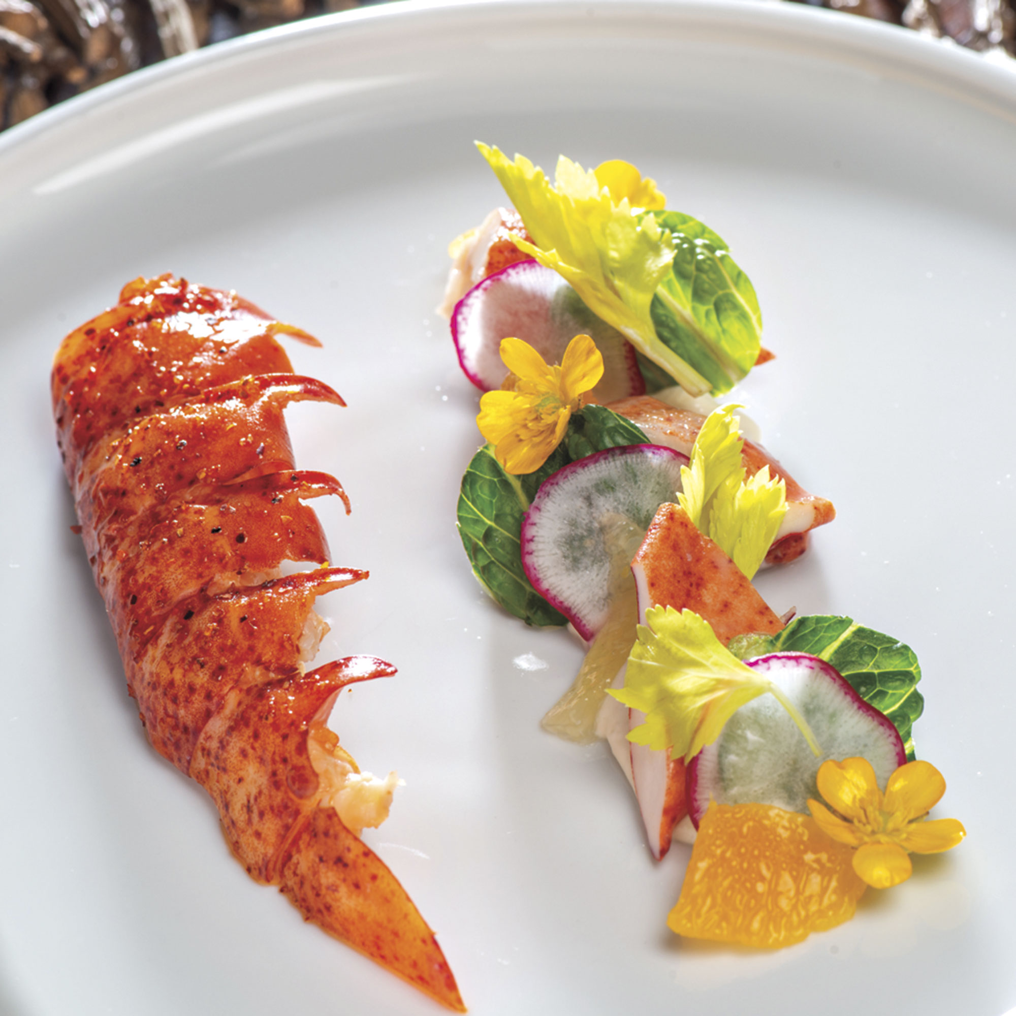 poached Maine lobster salad with citrus supremes, celery and radish; Photo courtesy Lake Kora