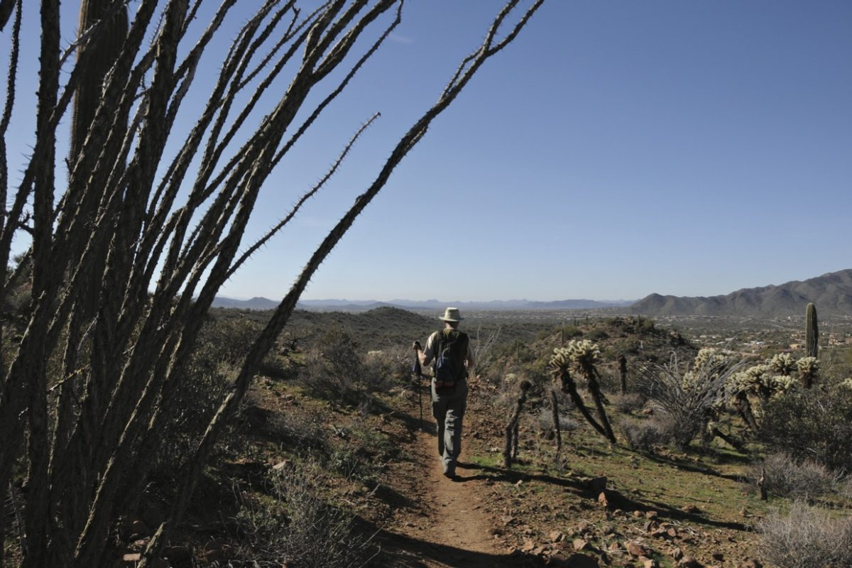 Planting the Seeds for the Sun Corridor Trail