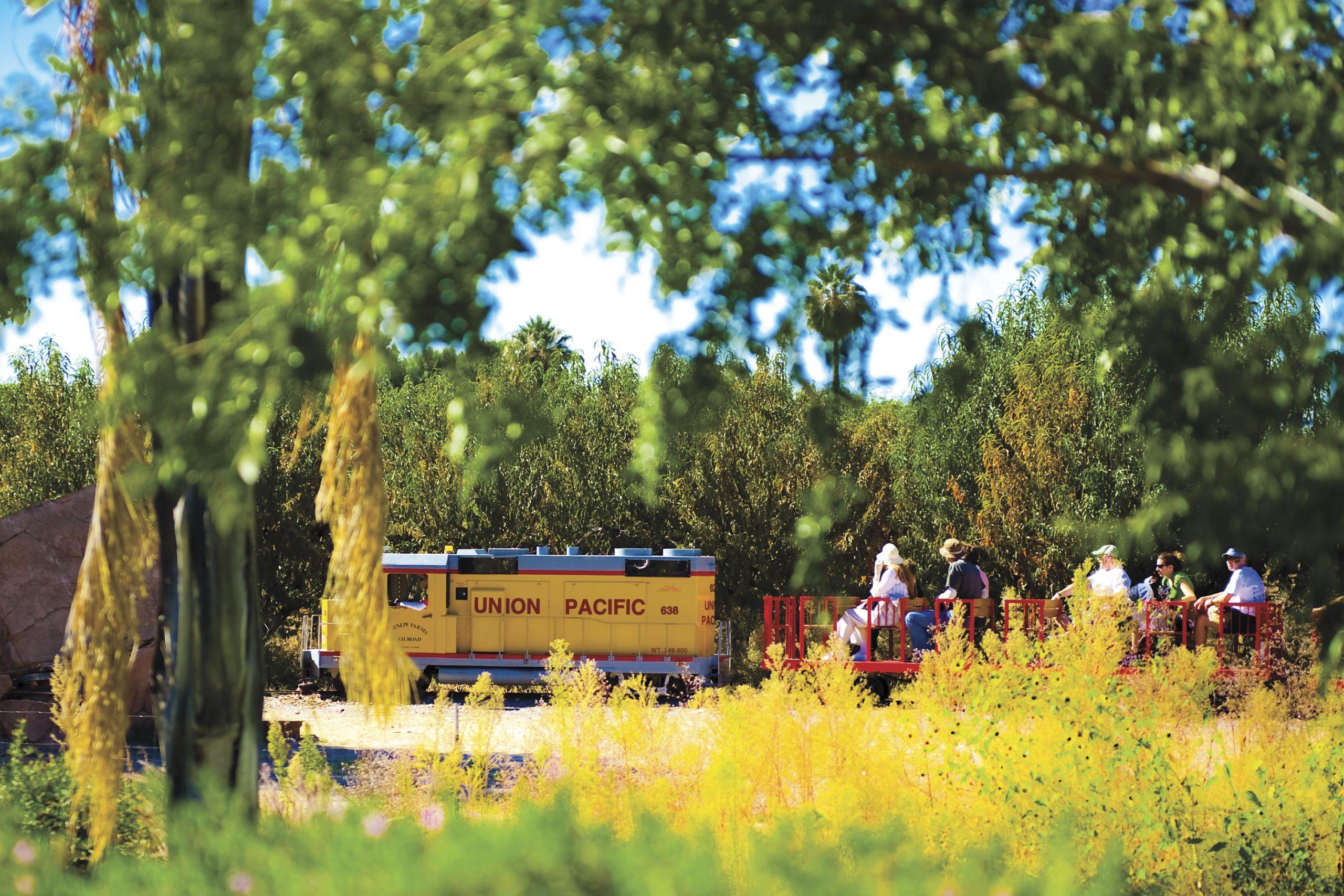 train ride at Schnepf Farms; Photo by Foskett Creative/Courtesy Schnepf Farms